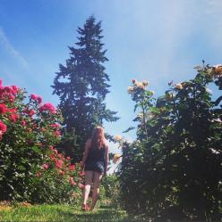 rosegarden