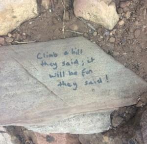 Table Mountain graffiti (2)